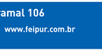 www.feipur.com.br